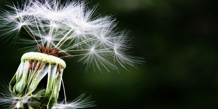 5 BLAGODETI KOJE MEDITACIJA UNOSI U NAŠ ŽIVOT